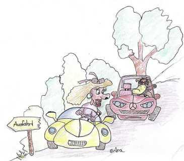 Im Wagen vor mir ... - Bild von Ara (Zum Vergrößern anklicken!)